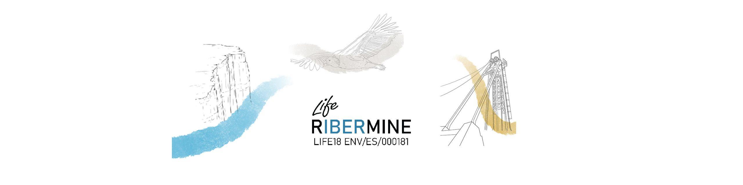 LIFE RIBERMINE is a featured new in the Máster de Restauración de Ecosistemas – MURE, at Universidade de Alcalá
